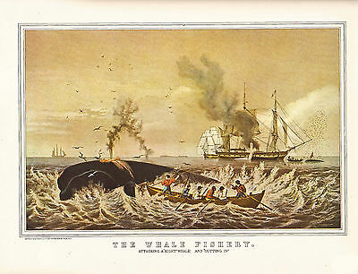 "CURRIER & IVES print of THE WHALE FISHERY ""THE RIGHT WHALE""  (1955 reprint)"