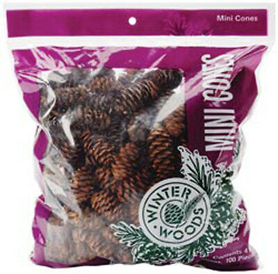 Natural White Spruce Pine Cones 1 Ounce/Pkg-