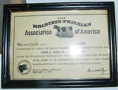 dairy related Hoilstein Friesian assn certify Brooklet Geo Eagle Winchester,Va