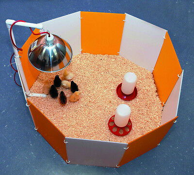 Farm Innovators Baby Chick Chicken Quail Poultry Broody Starter Home Cage Pen