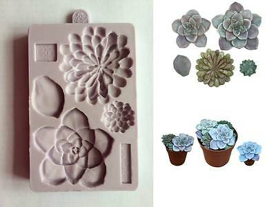 Karen Davies Succulent Sugarcraft Mould   3 different flowers  NEW DESIGN