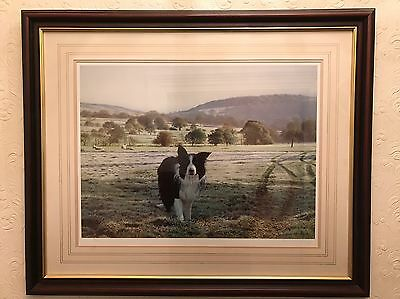 Steven Townsend Limited Edition Signed Print