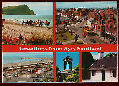 (P104) Greetings from Ayr. 1980s John Hinde Multiview Postcard