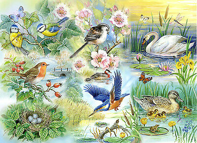 The House Of Puzzles  250 BIG PIECE JIGSAW PUZZLE - Feathered Friends Big Pieces