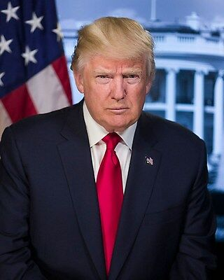 President Donald Trump Official Portrait 8 x 10 Photograph Photo Picture