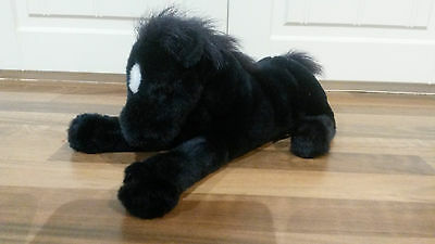 beautiful black horse with beautiful black maine & tail, & white spot on head