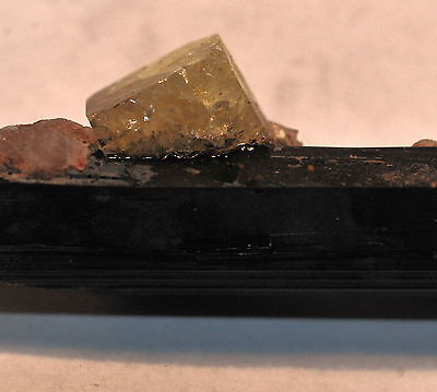 Msh Very Rare Gemmy Yellow Leucophanite Crystal On Aegerine! Quebec, Canada