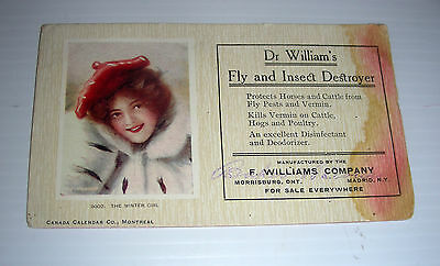 vintage DR WILLIAMS Fly and Insect Destroyer ad blotter Madrid N.Y. early cent.
