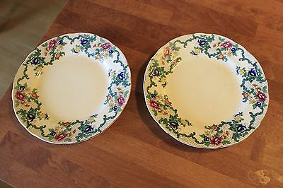 Vintage Royal Cauldon – Victoria – Pair Medium Plates – 8 ¼ inch – Great! –