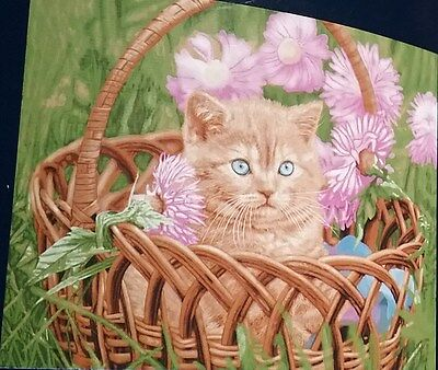 KITTY IN A BASKET CRIB BLANKET 43 X 55 NEW - Royal Plush Raschel