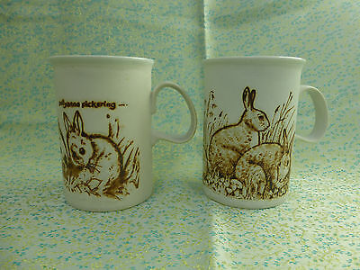 2 x vintage dunoon pottery mugs