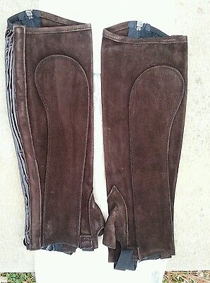 NWT RECTILIGNE Toulouse Dark Brown Suede Leather Half Chaps w/Zip