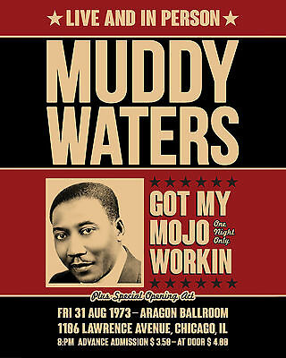 "Muddy Waters Concert Poster - 8""x10"" Color Photo"