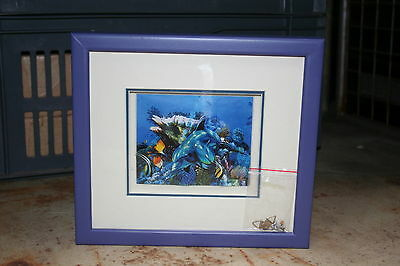 Wholesale job lot shop clearance wooden framed 3D Dolphin image x24 LotA