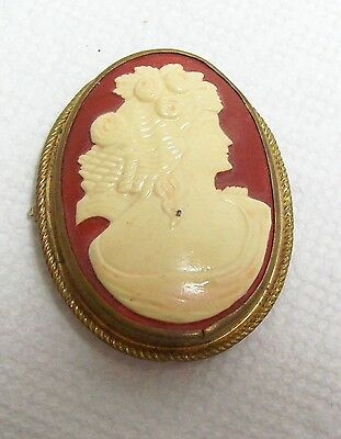 Vintage Celluloid CAMEO Brooch