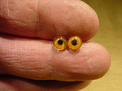 a pair vintage solid Glass Eyes size 6 mm age 1910 for doll bears taxidermy 361