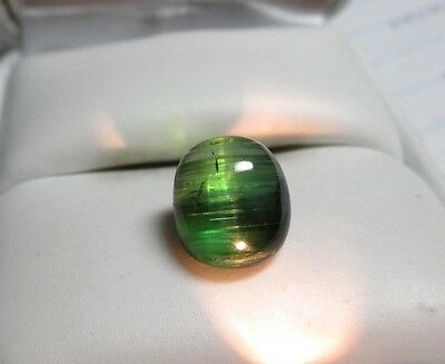 Excellent Quality 5.44ct Natural Green Cats Eye Tourmaline-Sharp Eye-Transparent