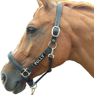 Personalised Quality Black Leather Horse FULL Head Collar