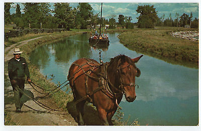 "(P684) Horse towing Canal Boat ""Marguerite"". Morrisburg, Ont. Canada. Postcard"