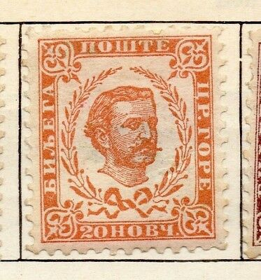 Montenegro 1893 Early Issue Fine Mint Hinged 20n. 128332