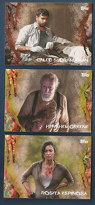 2016 Topps Survival Walking Dead Caleb Subramanian Rotten Parallel #45 (#23/25)
