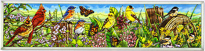 MEADOW'S EDGE BIRDS * CARDINALS ROBIN BLUEBIRDS ORIOLES 9x40 GLASS WINDOW PANEL