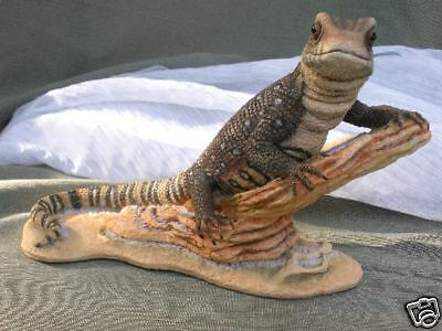 Country Artists Natural World Monitor Lizard Excellent Likeness CA04189 New wBox