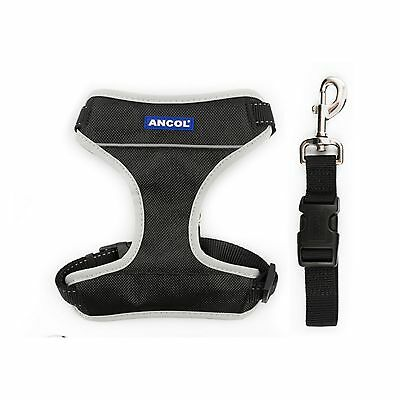 Ancol Pet Products Travel And Exercise Harness