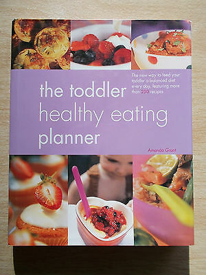 The Toddler Healthy Eating Planner~250+ Recipes~Cookbook~192pp HBWC