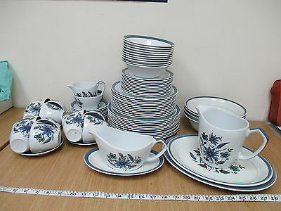 Alfred Meakin Glo-White Ironstone Blue/ White Floral Huge 82-Pc Dinner Service