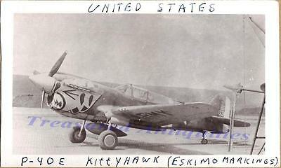 WWII US Army Air Corps Curtiss P-40E Warhawk Fighter Tiger Art Airplane Photo