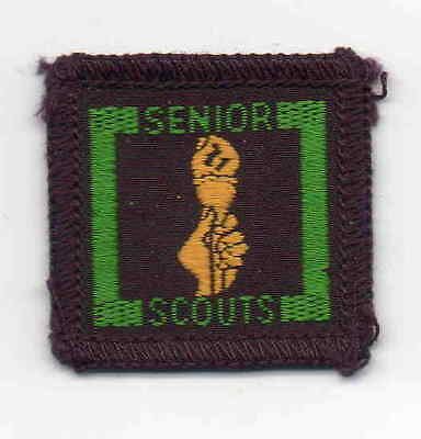 UK Boy Scout 1960s Senior Scout Civics Proficiency Badge