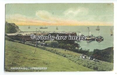 tq0614 - Devon - Haymakers in Fields of Ilfracombe & Paddlesteamers - Postcard