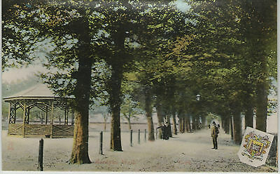 MARDYKE WALK CORK EARLY 1900s MILTON/WOOLSTONE BROS. POSTCARD UN-POSTED NO. 3040