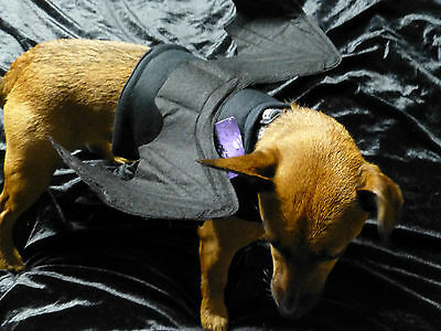 Bendable Dog Bat Wings Size Small Ideal For Fancy Dress Party ..gothic Dog !
