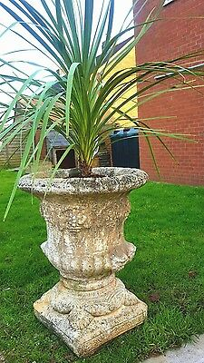 giant large reclaimed stone urn planter 2ft tall