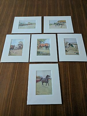 Six Genuine Cecil Aldin Black Beauty Horse Racing Prints
