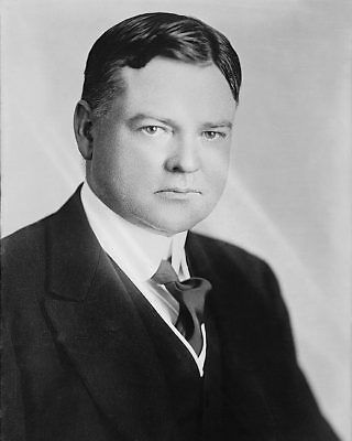 Portrait of President Herbert Hoover 8x10 Silver Halide Photo Print