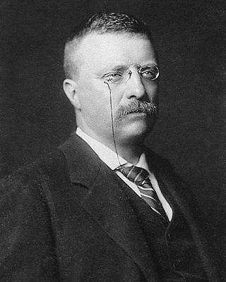 NY Governor Theodore Roosevelt Portrait 8x10 Silver Halide Photo Print