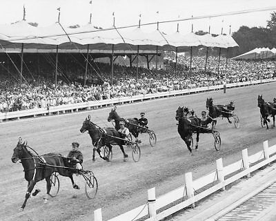 HORSE HARNESS RACING AT HAMBLETONIAN STAKES 8x10 SILVER HALIDE PHOTO PRINT