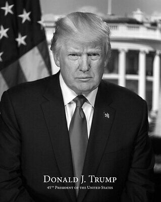 President Donald Trump Official Portrait B&W With Name 11x14 Silver Halide Photo