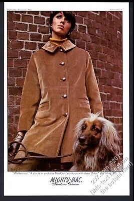 1968 Afghan Hound and woman photo Mighty-Mac MacCord Corduroy vintage print ad
