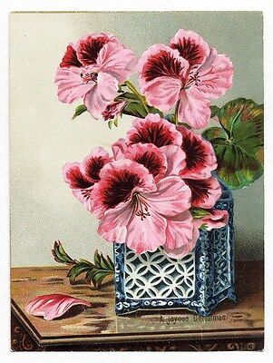 GERANIUM Flowers VICTORIAN Greeting Card CHRISTMAS 1880 Language of Flowers Poem