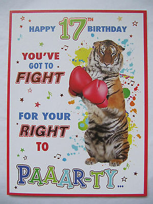 Youve Got To Fight For Your Right To Paaar-Ty Happy 17Th Birthday Greeting Card