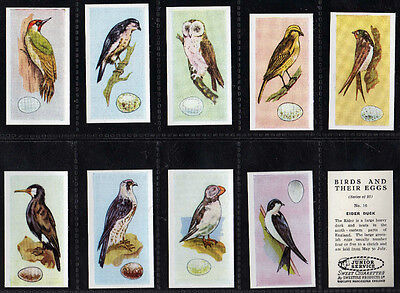 Cigarette/Trade cards, British Birds and their eggs
