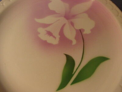 Vintage Syracuse China Airbrush Daffodil Pattern Dinner Plate