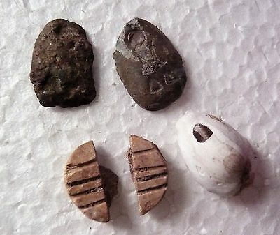 China, 4 pcs early coins, ant nose, natural and bone imitation cowries 中国先秦古币