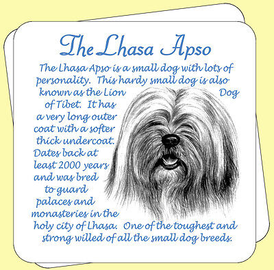 Lhasa Apso Dog Origins And Breed Facts Pair Of Gift Packed Wooden Coasters