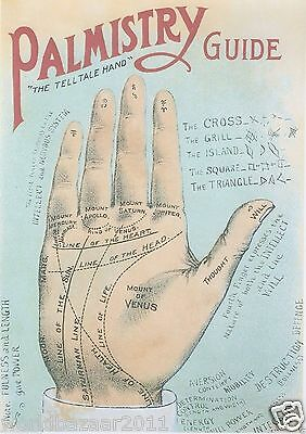 Palmistry Print Palm Reading Fortune Telling Carnival Clairvoyent Map Freakshow
