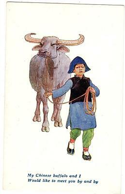 Vintage Comic Postcard,chinese Child Leads Water Buffalo